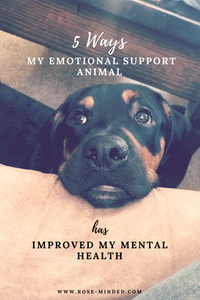5 ways my emotional support animal has improved my mental health