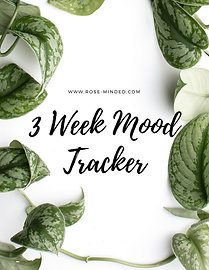 3 Week Mood Tracker