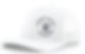 Screen Shot 2020-08-09 at 2.04.59 PM.png