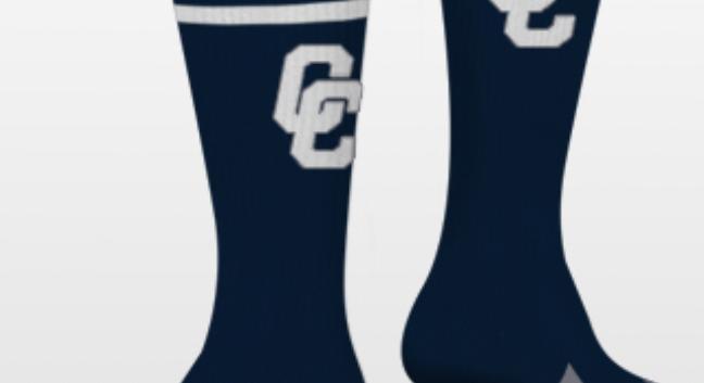 The STRIPE Sock (Runner-up)