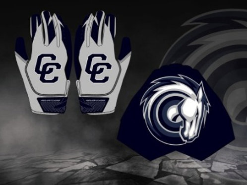 Charger Gloves