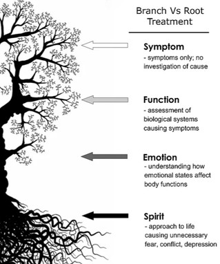 The Effects of Negative Emotions Within the Body.