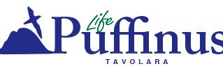 Selezione di due collaboratori per LIFE Puffinus Tavolara