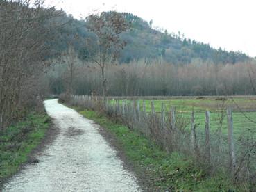 Pista ciclabile presso Bibbiena (AR)