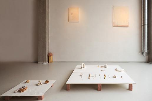 VirtualVitrine - galerij Raf van Severen