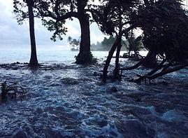 Sea Level Rise 6.jpg