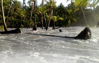 Kili high tide.PNG