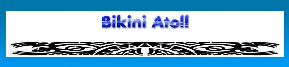 Bikini Website.jpg