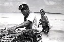Fish trap 1 on reef being set