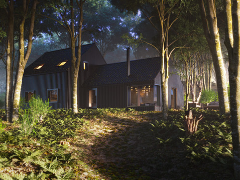 Corrugated house in the woods