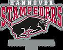 Hannover Stampeders American Football eingetragener Verein
