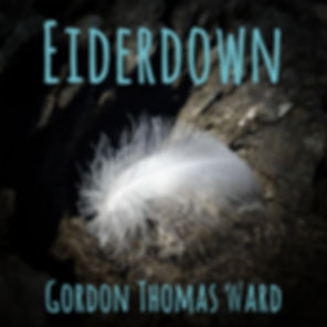 Eiderdown album front cover.jpg
