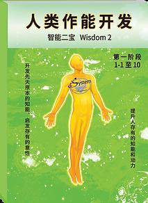 Wisdom2 简体.png