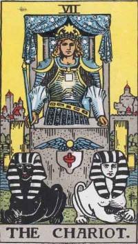 chariot and emperor tarot combination