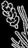 Logo%252520Wildblumen_edited_edited_edit
