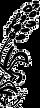 Logo%2520Wildblumen_edited_edited.png