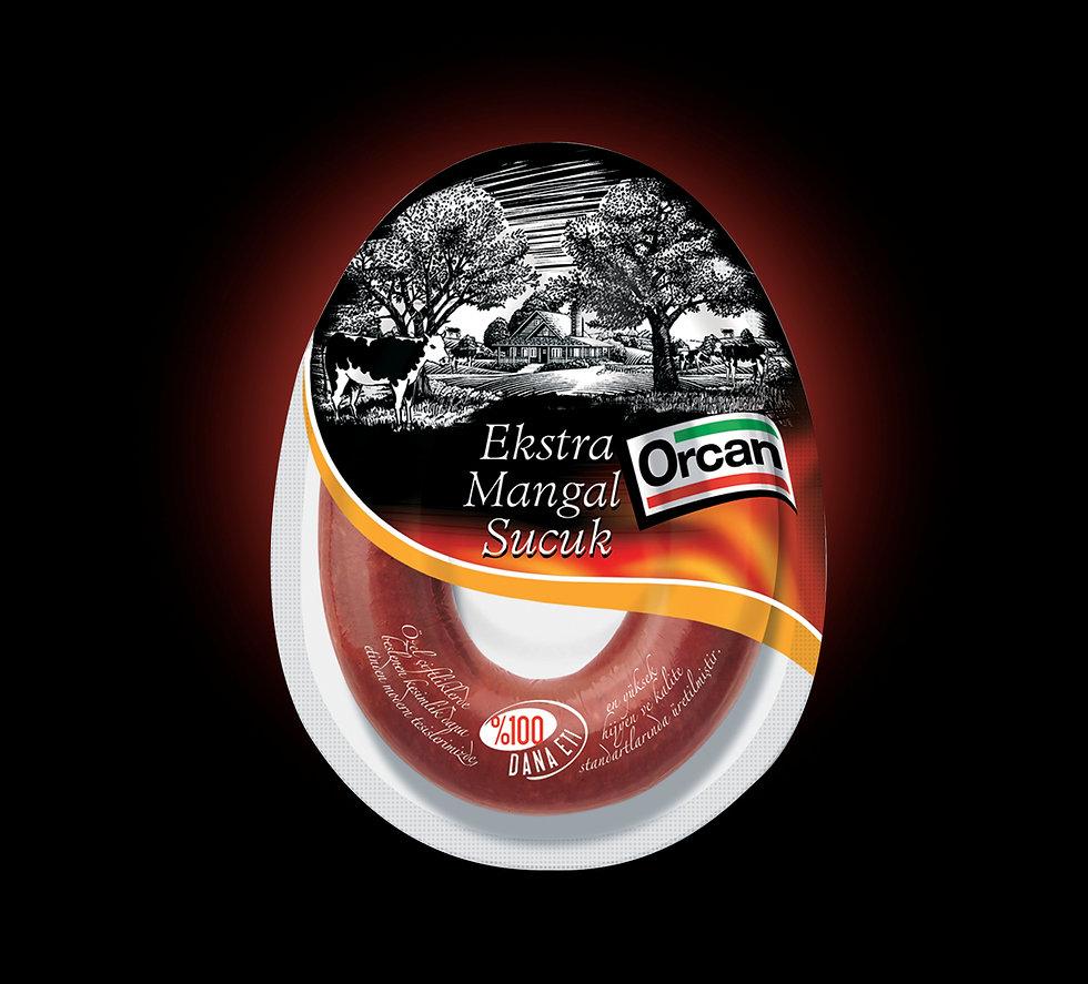 ORCAN3.jpg