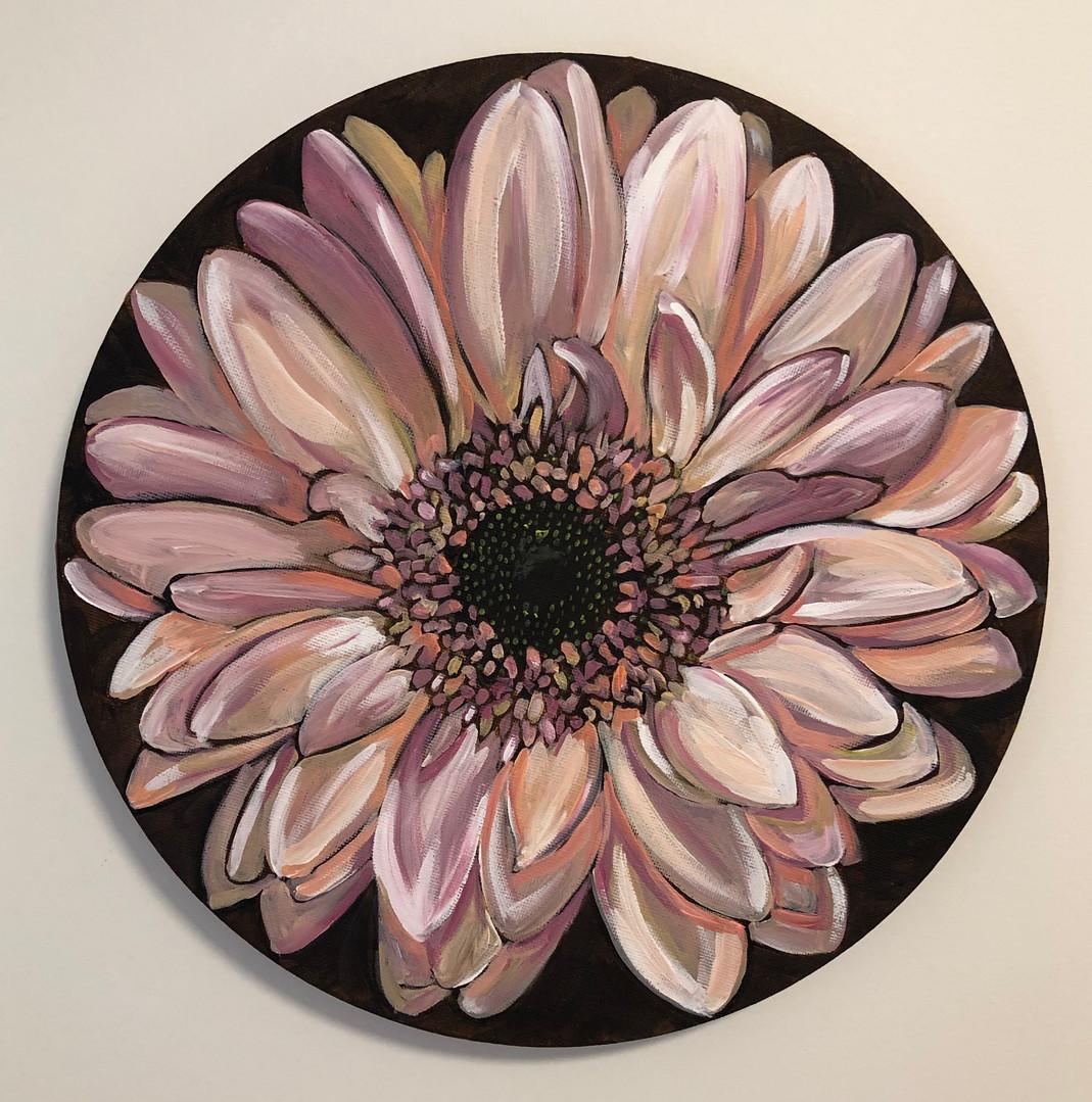 Gerbera, 2019, Acrylic on canvas, 30 cm (diameter).