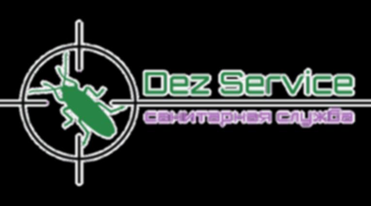 Dez Service.png