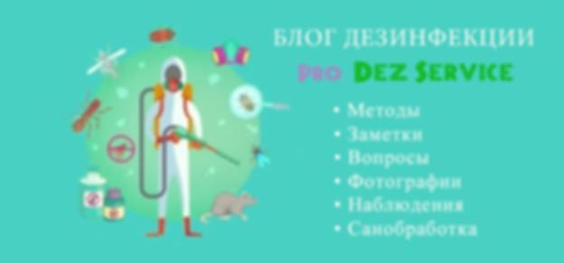 Блог дезинфекции.jpg