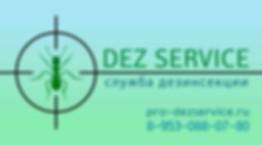 Визитка Dez Service.jpg