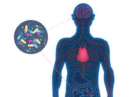 Микроорганизмы и человек.jpg