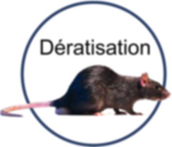 дератизация - уничтожение грызунов