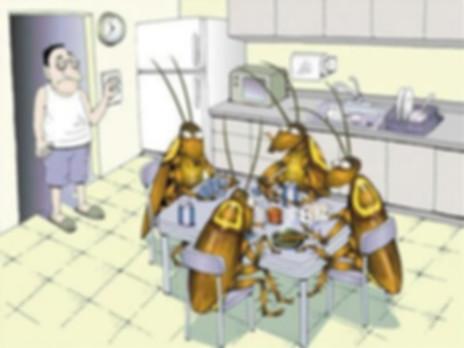 Откуда тараканы в квартире.jpg