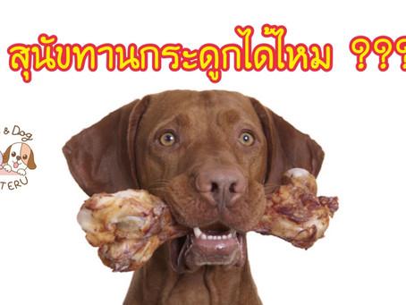 สรุปแล้วสุนัขทานกระดูกได้ไหมนะ ???