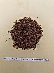 コーヒーチェリーサイレージ.JPG