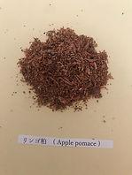 リンゴ粕.JPG