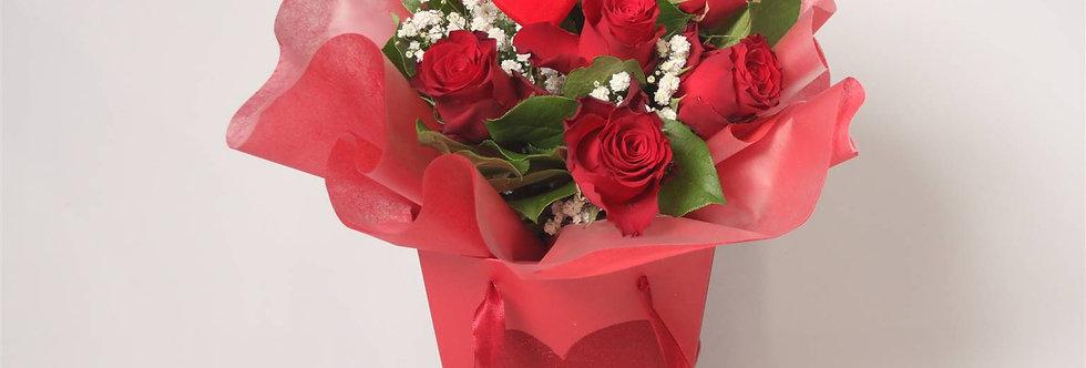 Red Roses Aqua
