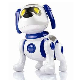 Dog - 25750 Buddy My Perfect Dog.JPG