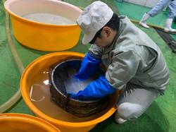 洗米2020