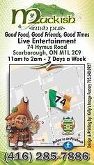 Muckish Irish Pub Business Card back.jpg