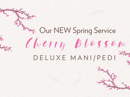 NEW Spring Spa Treatment - Cherry Blossom Deluxe Mani/Pedi
