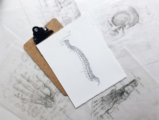 Saiba tudo sobre a Osteoporose