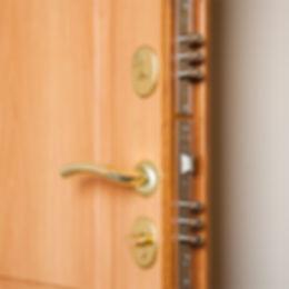 Недорогая входная дверь Гардиан Фактор