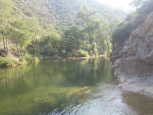 rivieregalamusjuillet 19.jpg
