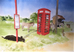 Bus stop donkeys 11x14 wc