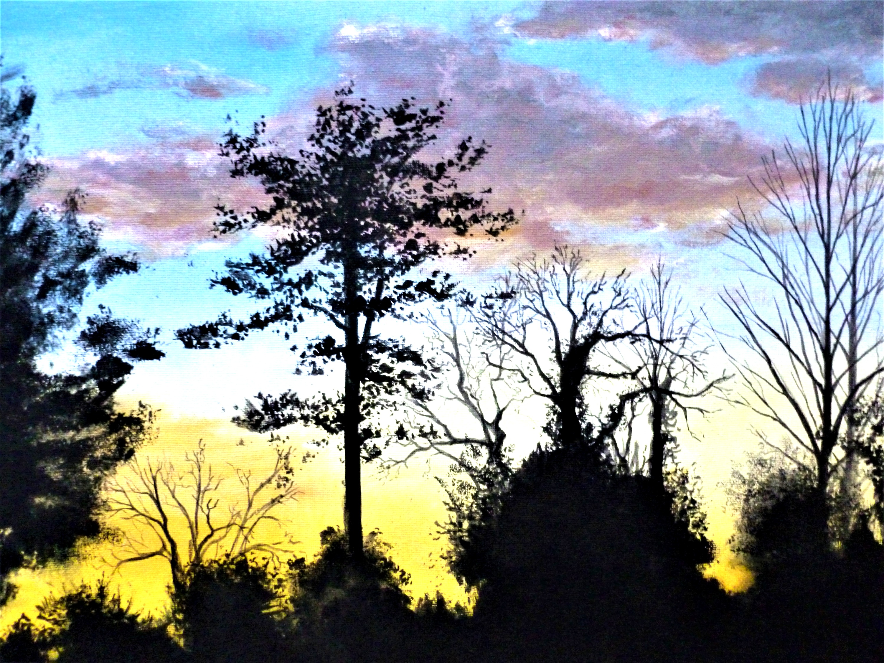 New%20Forest%20Sunset_edited