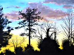 New Forest Sunset 16 x 20 acrylic