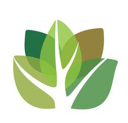 Employment Opportunity: Arborist Team Leader