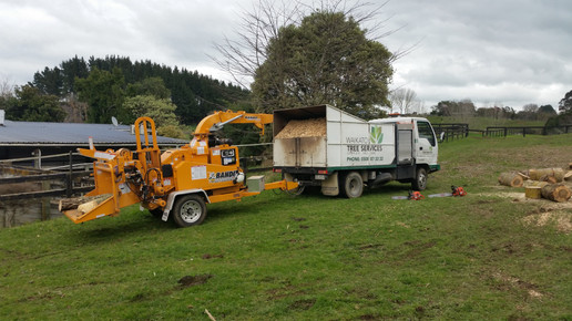 "Our large chipper - capable of mulching debris up to 15"" in diameter"