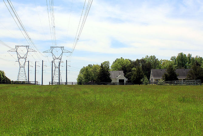 Farm with powerlines overtaking trees and buildings.