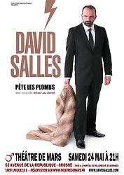 Affiche David Salles.jpg