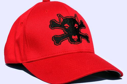 Original TDA logo hat*