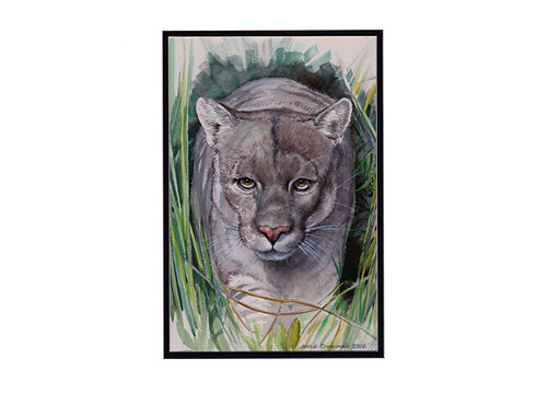 Grey Panther Management About