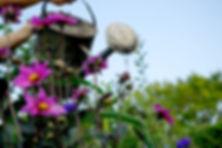 Tuin van Rose - assistentie bij uitvaart