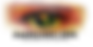 ELCFF Logo - NEW - FC - 09-03-2018 - POS
